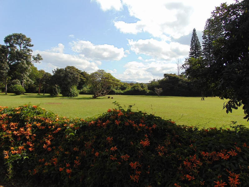 Gardens at the Karen Blixen Museum